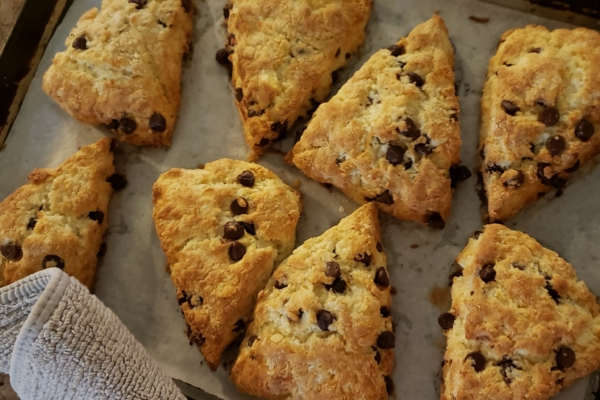 Image shows fresh baked scones from Ovenbird Bakery